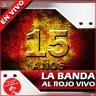 LA-BANDA-AL-ROJO-VIVO-15-A-C3-91OS-EN-VIVO-2013-