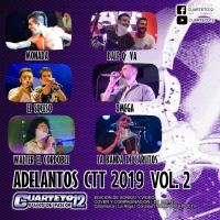 ADELANTOS CTT 19 - VOLUMEN 2 (2019)